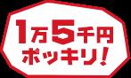 pc_coupon_button_type_2