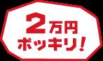 pc_coupon_button_type_3